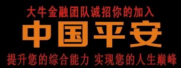 中国平安人寿保险股份有限公司-邵阳人才网